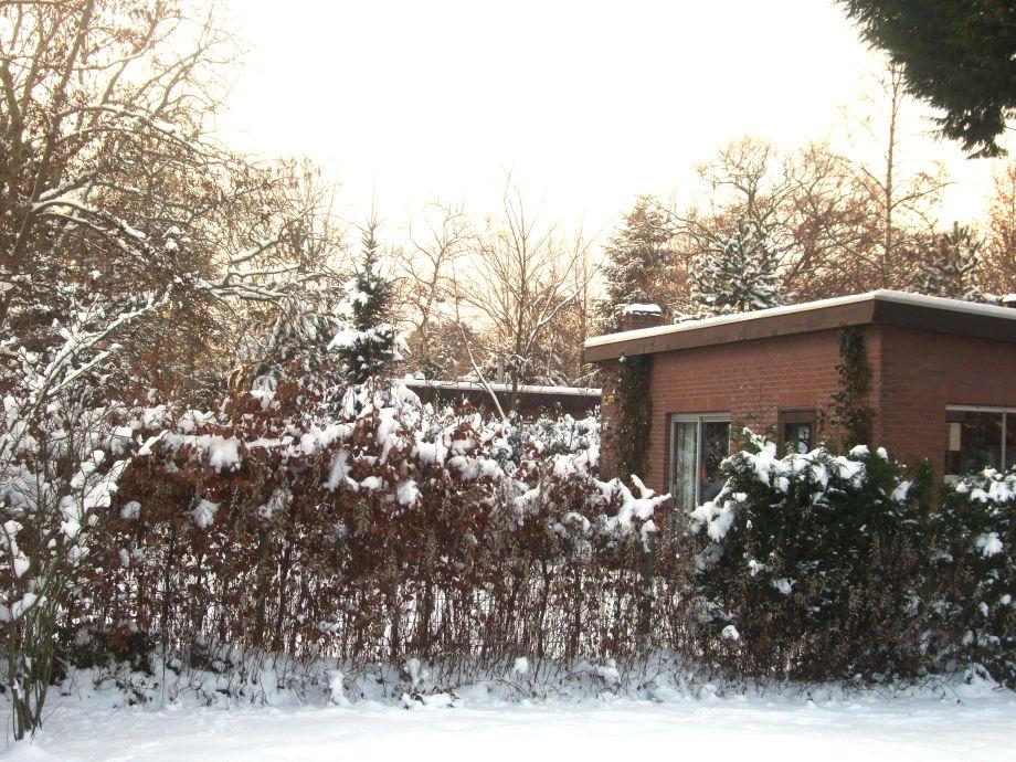 Die Bungalows im Winter