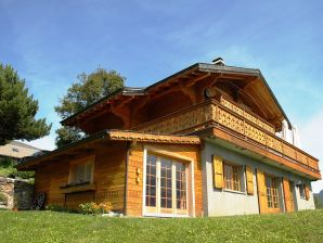 Holiday apartment and Studios Chalet Les Combins (1100 m)