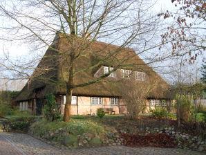 Ferienhaus Ole Schün Dannau