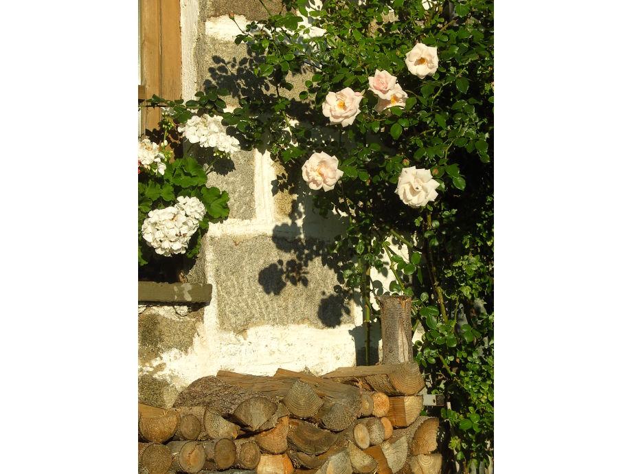 ferienwohnung zur terrasse bayerischer wald deggendorfer land lalling firma ferienhof. Black Bedroom Furniture Sets. Home Design Ideas