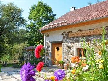 Ferienhaus -am-Schlossteich