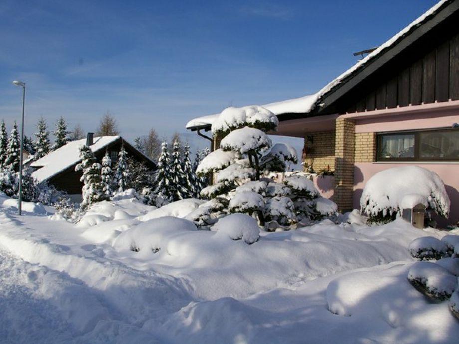 Haus Cornus im Winter