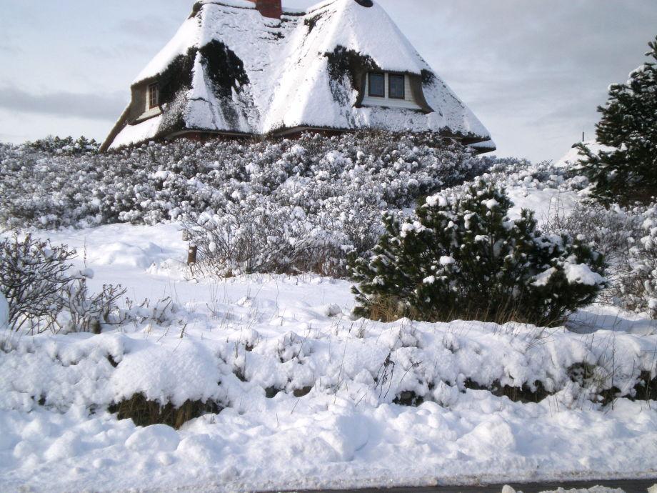 Raanhof im Winter