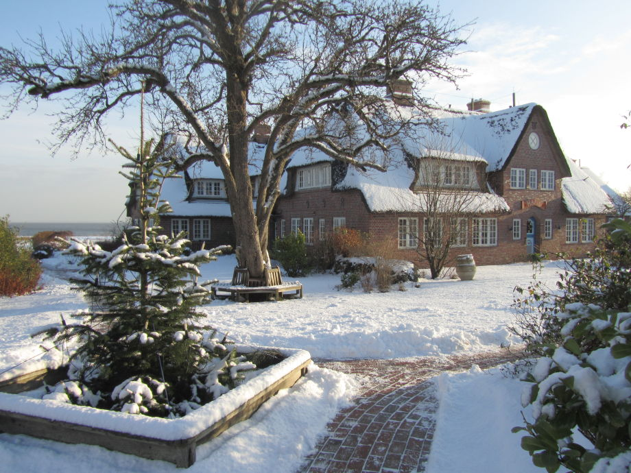 Haus Hafis im Winter