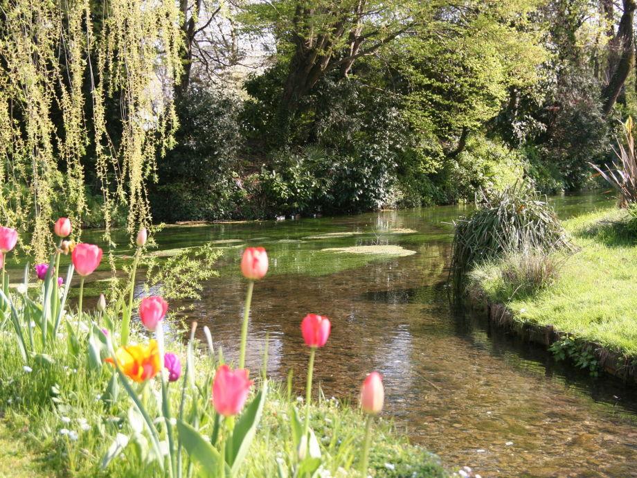 Fluss im Schloss Garten