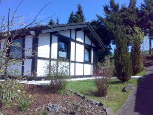 Ferienhaus Hennesee Blick Hasselt28