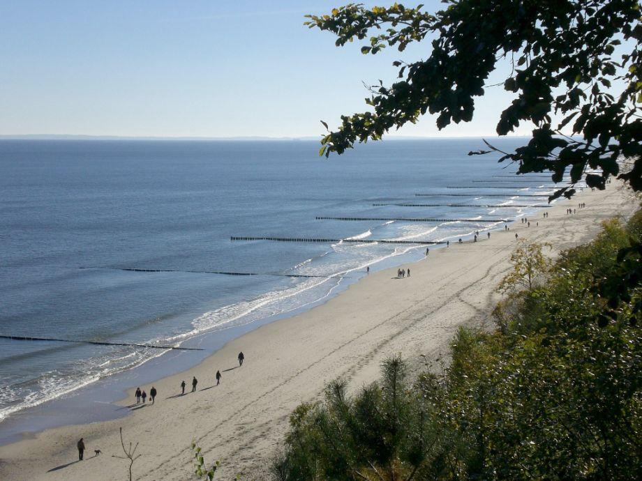 Ferienwohnung Moosbeere Premium, Insel Usedom - Herr Michael Huebner