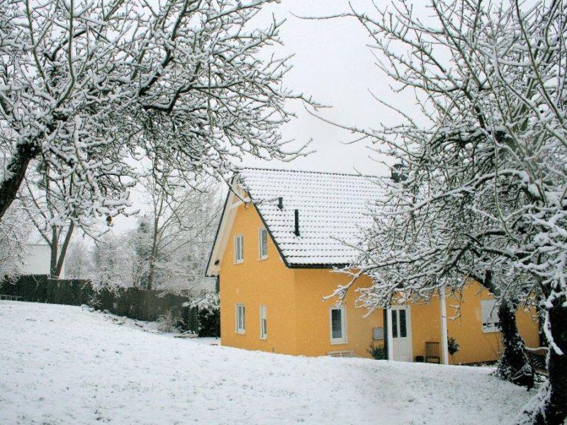 Ferienhaus Moseltraum