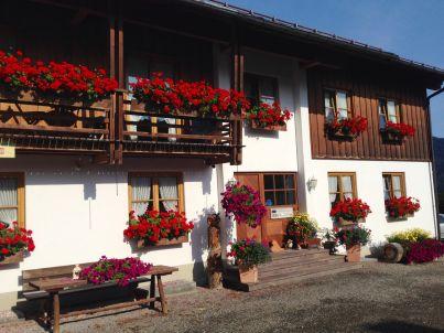 Luxusferienwohnung im Alpine Style