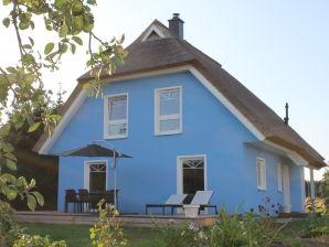 Ferienhaus De niege Leive