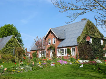"Holiday house ""Ferienwarft 'Elisabeth'"""
