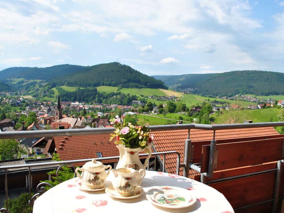 View from the balcony Goldener Hahn Residence