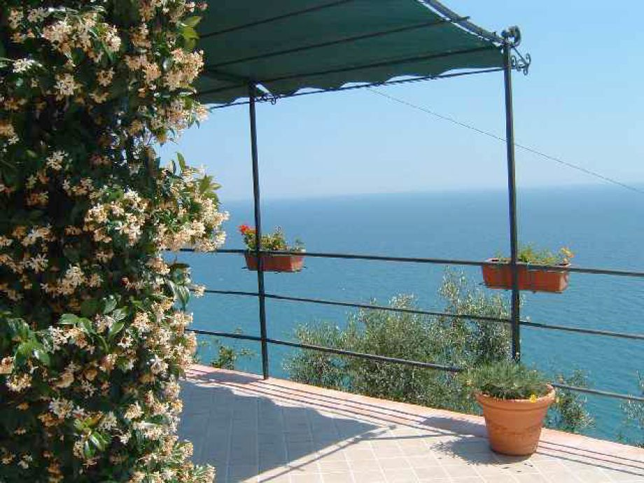 Terrace with gelsomino flowers