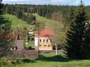 Ferienhaus Berghütte Javorka