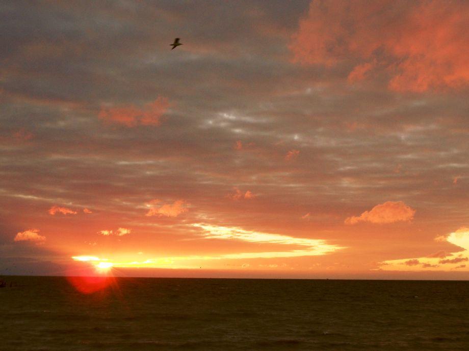 Sonnenaufgang vor der Terrasse