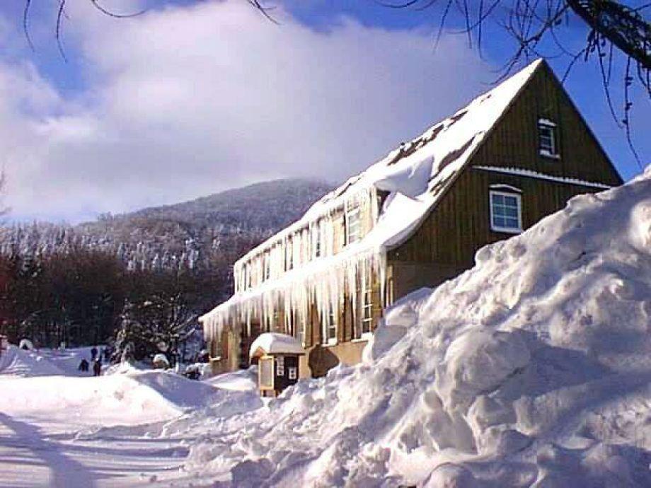 Unser Eispalast im Winter 2002