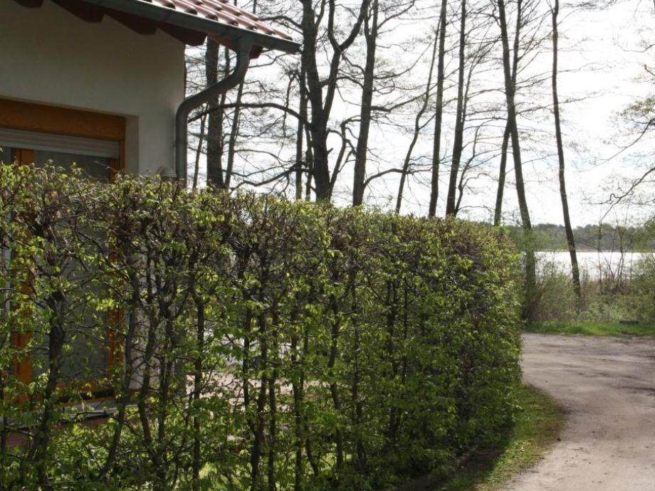 das Haus - im Hintergrund der Jabelsche See