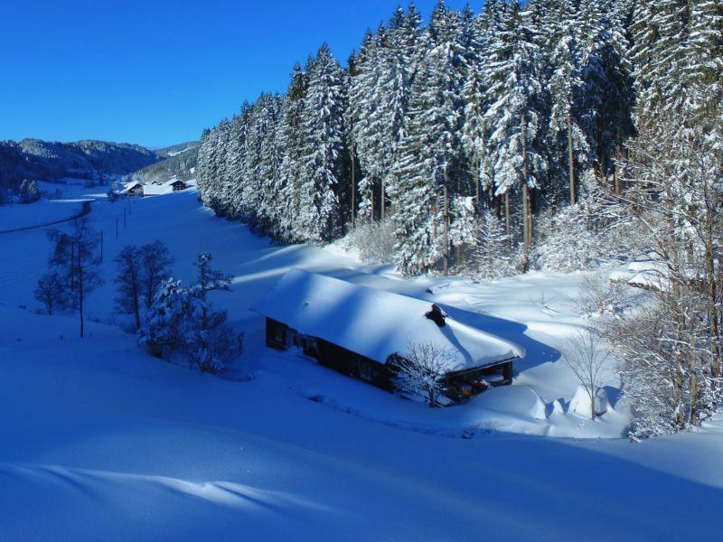 Ferienwohnung Hütte am Bächle