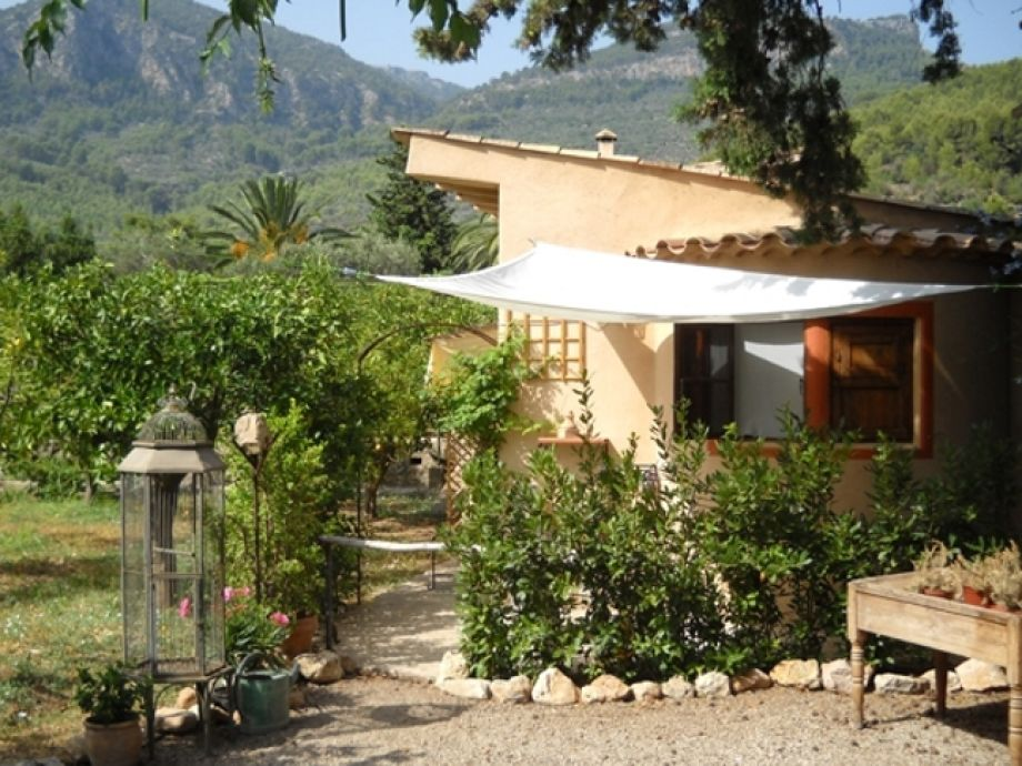 Single house in the middle of an orange grove