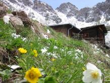 Berghütte Lindlerkasa