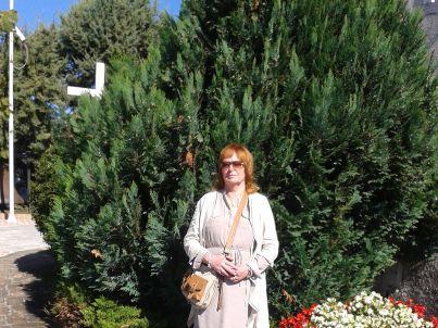 Ihr Gastgeber Vesna Persic-Rukonic