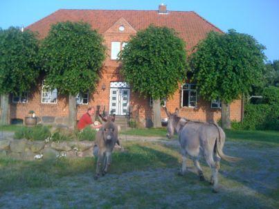 Ferienwohnung Schäferhof an der Maurine 1