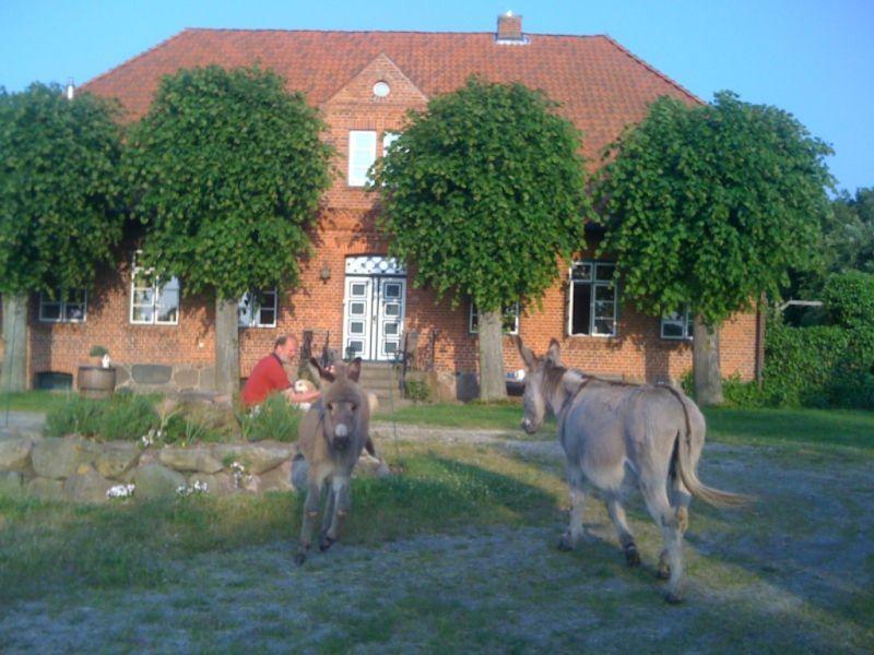 Bauernhof Ferienwohnung Schäferhof an der Maurine 1