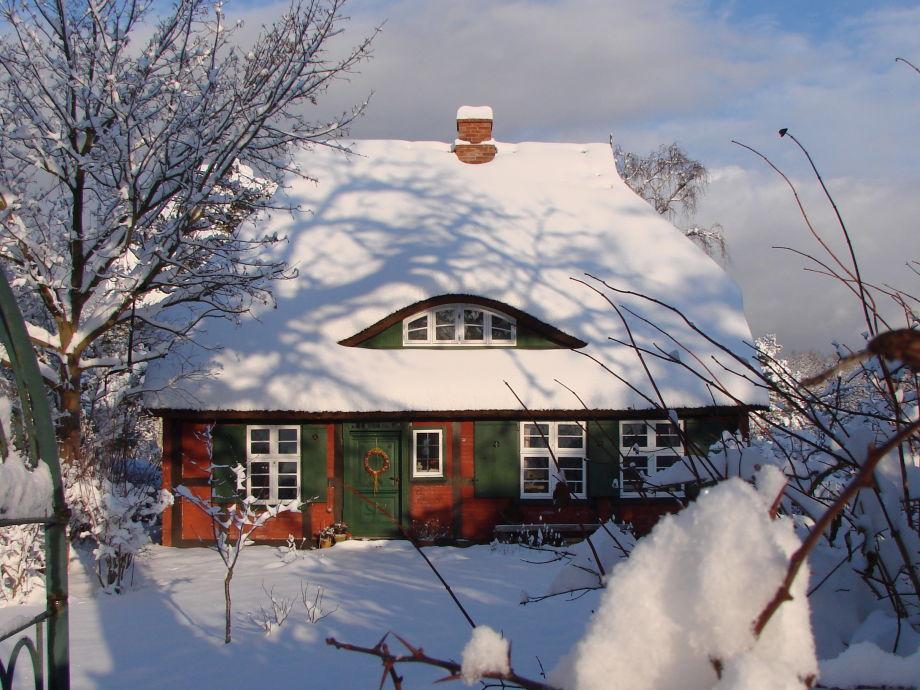 Das Darßhaus im Winter