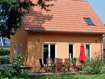 Holiday house Treibholz