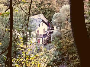 Ferienwohnung Neumühle  ab April 2014!