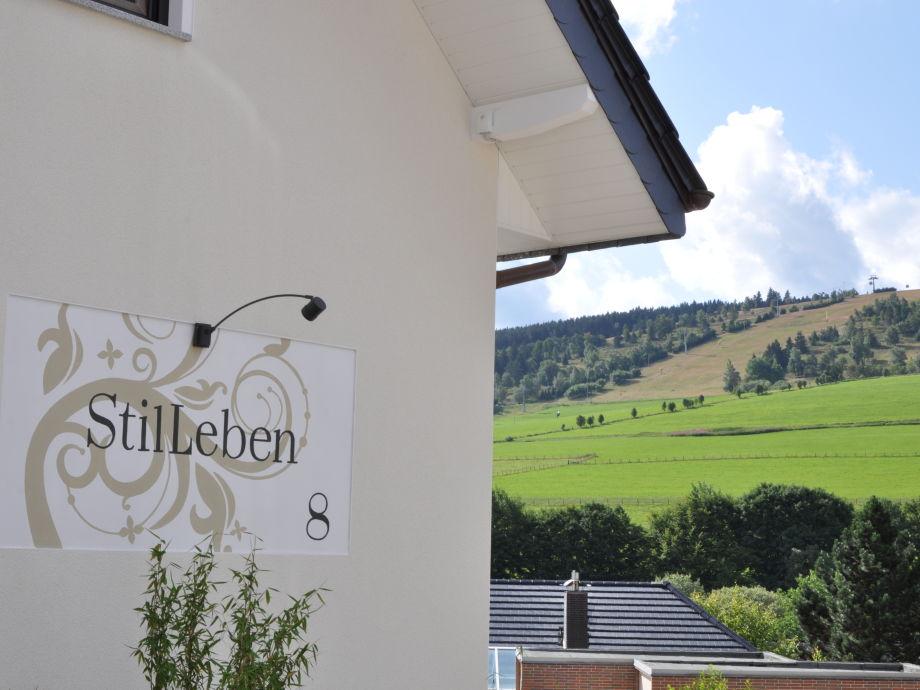 Haus Stilleben, im Hintergrund der Ettelsberg
