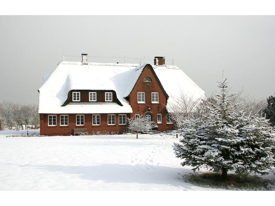 Ferienhaus Ambronia-Wohnen unter Reet mit Meerblick