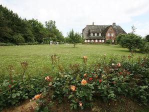 Ferienhaus Ambronia mit Meerblick Ferienwohnung  2