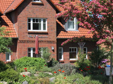 Ferienhaus Villa Klatschmohn