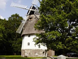 """Ferienhaus """"Die alte Mühle"""""""
