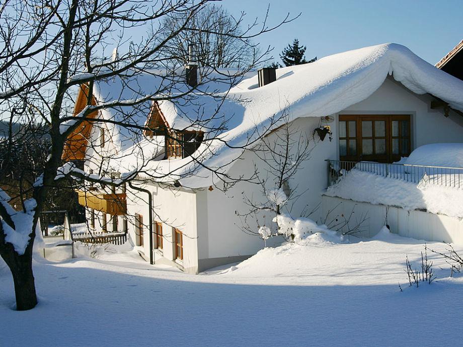 Winter auf dem Peterhof