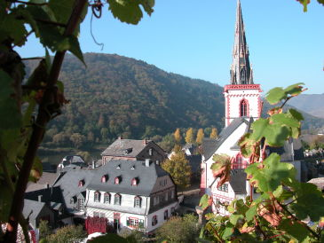 Ferienwohnung Pfaffenberg