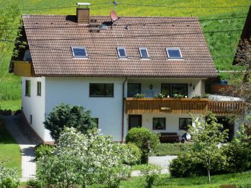 Holiday apartment House Steffe
