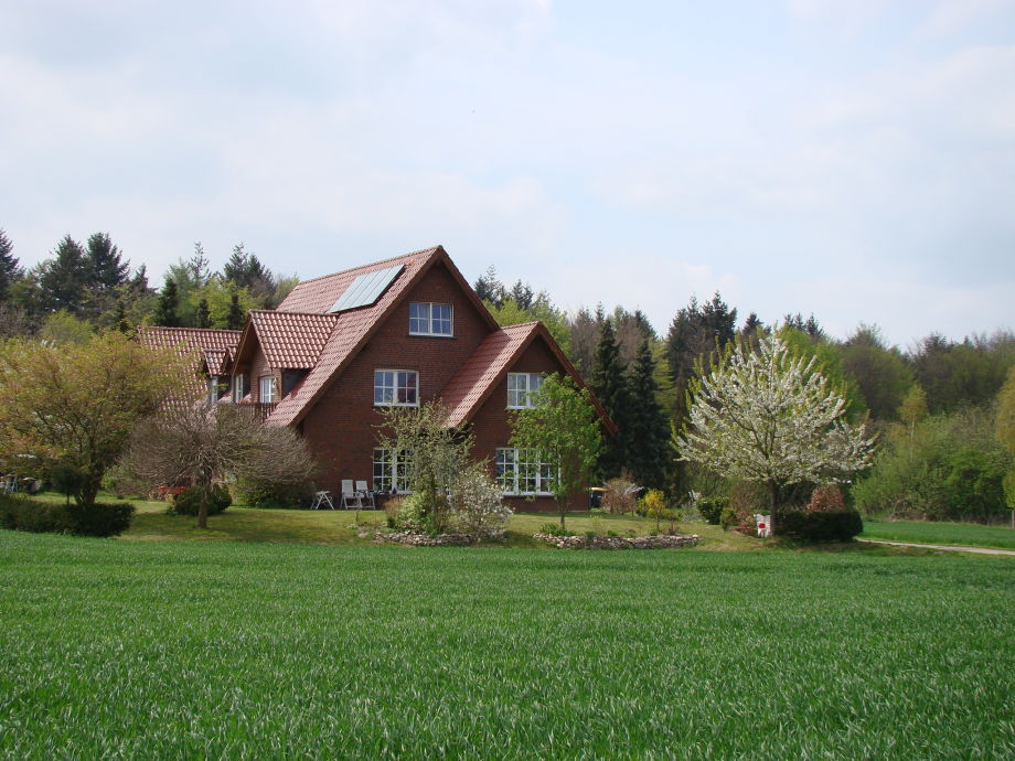 Haus im Frühjahr