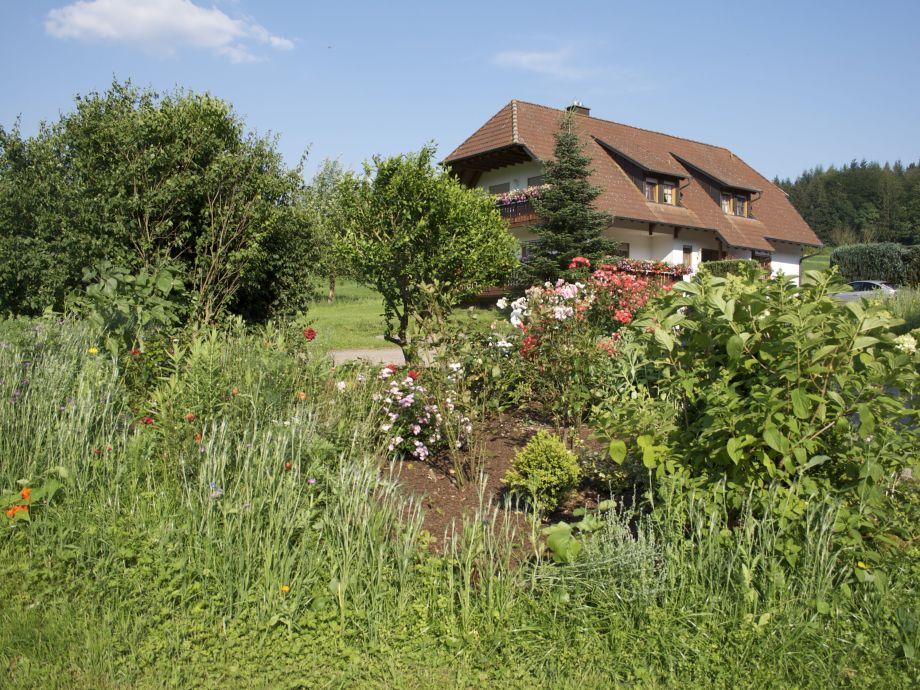 Rosengarten vor dem Ferienhaus