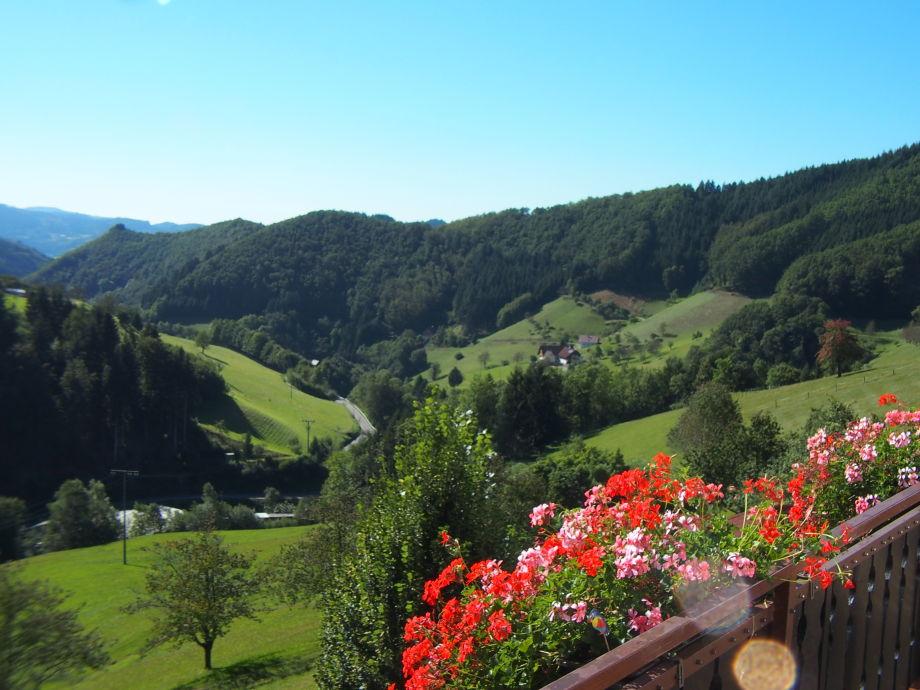 Ferienwohnung 1 Panoramablick mit Balkon