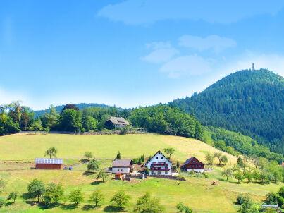 2 auf dem Müller-Bauernhof