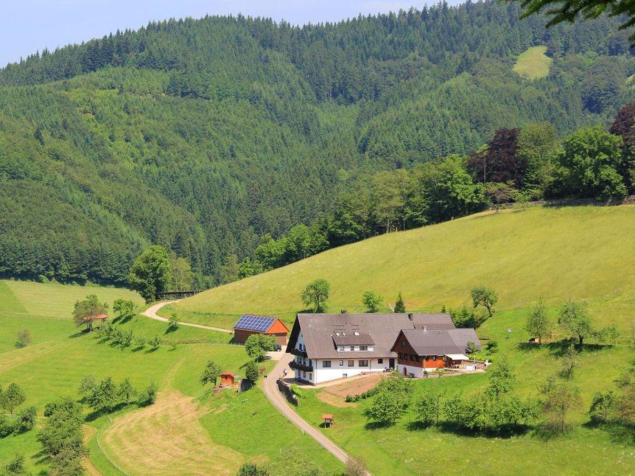 Ferienhaus  Ferienwohnungen Müllerbauernhof Schwarzwald