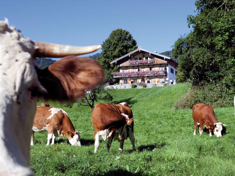 Bauernhof der Familie Kandlinger