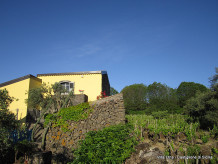 Holiday house Villa Etna
