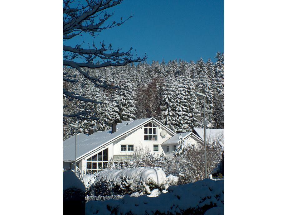 Winterbild - im Hintergrund der Nationalpark