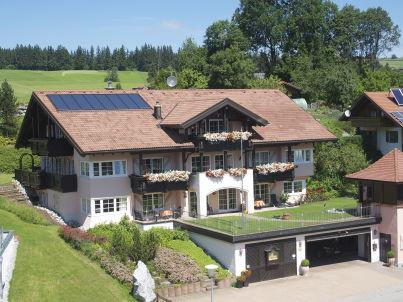 Silberdistel im Landhaus Wertach