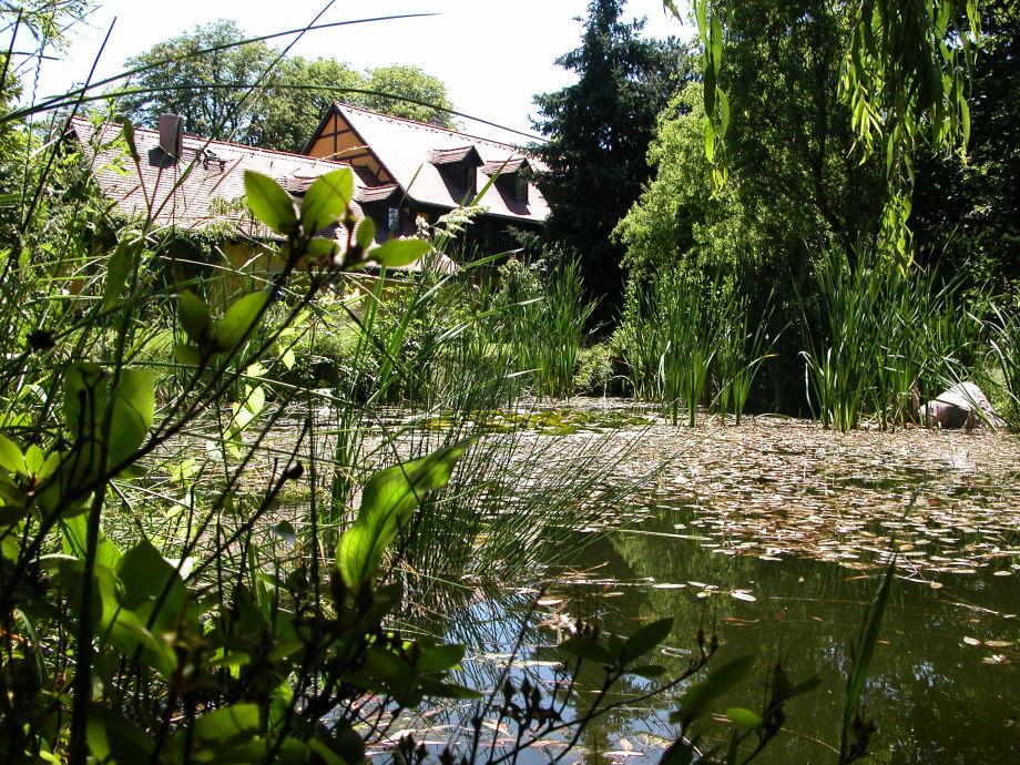 Blick über den verträumten Teich zur Ferienwohnung