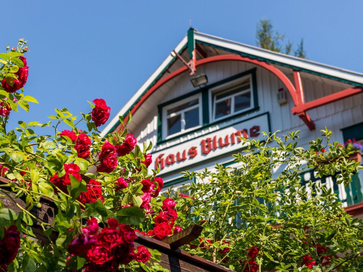 Ferienwohnung Haus Blume Appartement 001 Wernigerode