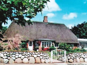 Holiday apartment in the Frisian-House with thatched roof